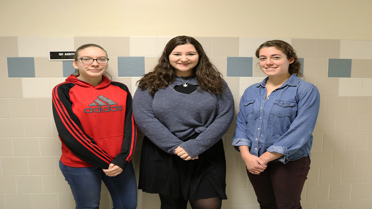 North Rose-Wolcott chorus members participate in senior high area all-state festival